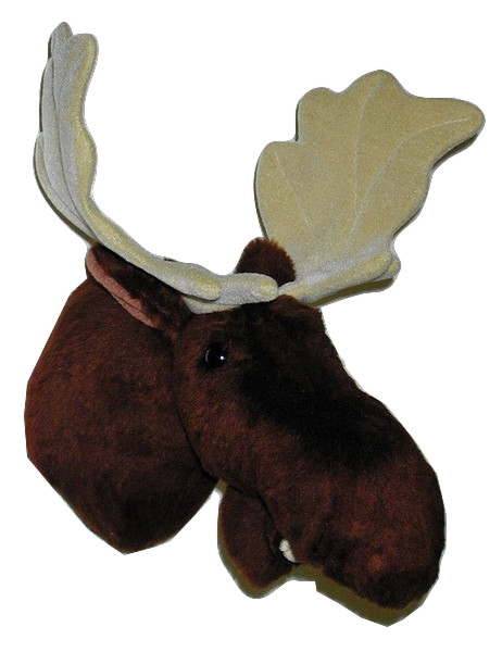Shorty - Medium Moose Trophy Mount